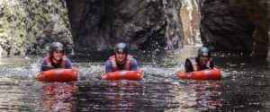 Storms River Gorge Half Day Adventure Experience
